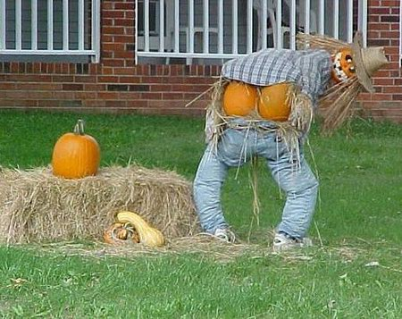 Funny Looking Scarecrows