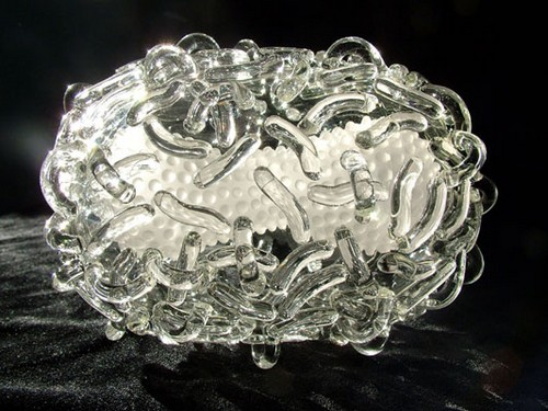 Incredible Glass Microbiology Sculptures