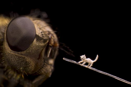 micro-sculptures that fit in the eye of a needle