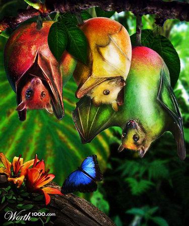 Plant+Animal=Plantimals