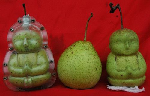 Funny Shaped Fruit and Vegetables
