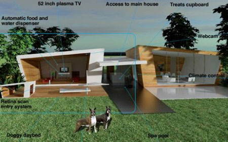 incredible dog house design
