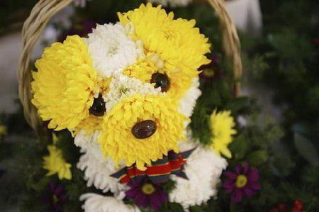 Lovely Flower Dog
