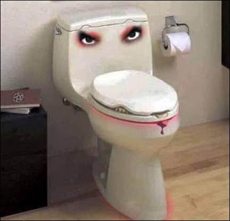 unusual washroom toilet design
