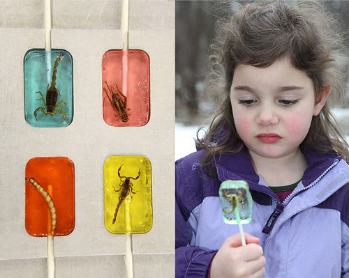 Sweet Lover? How About Insect Candy?
