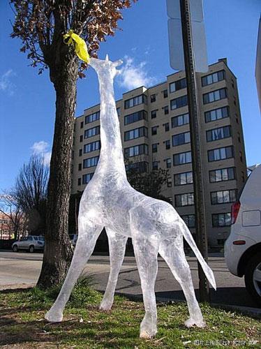 Interesting Sticky Tape Sculptures