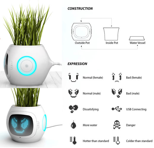Pet Plant - Plants Tell You What They Want