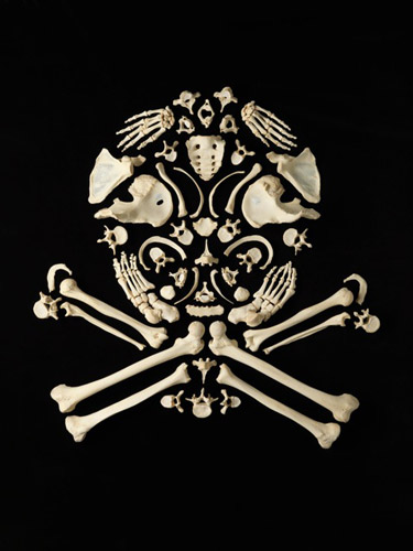 Incredible Art Made From Real Human Bones