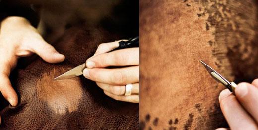 Etched Animal Skin Art