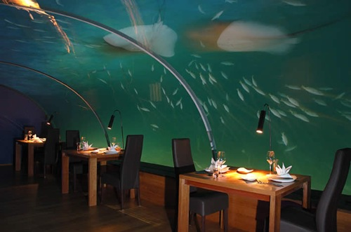 Ithaa Fabulous Underwater Restaurant As Well As Hotel In
