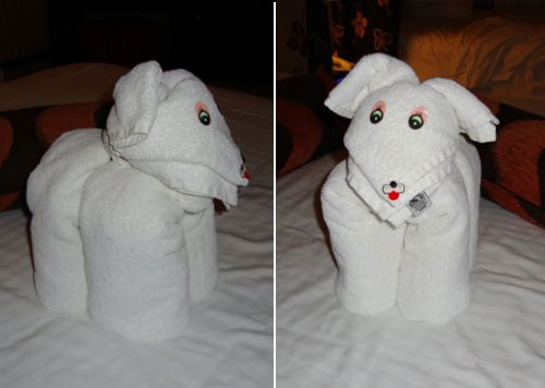 20 Cute Animal Towel Sculpture Design Swan