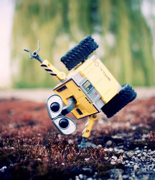 When Wall-E meet Danboard