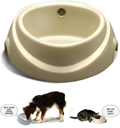 Contech Chatter Bowl Talking Pet Feeder