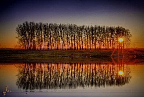 Beautiful Reflection Photography