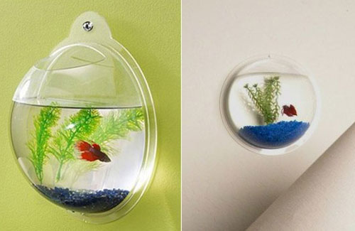 Acrylic Wall Mount Fish Bowl