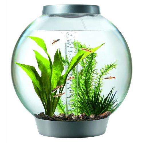 biOrb Aquarium Kit with Light Fixture
