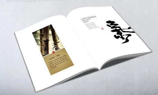 Legend of Chinese Bamboo: Minimal but Elegant Brochure Design