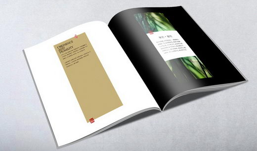 Legend of Chinese Bamboo: Minimal but Elegant Brochure Design