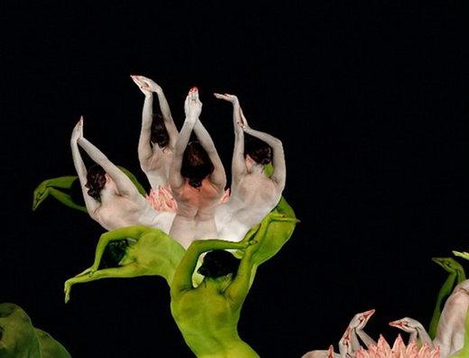 Stunning Behavior Art: Human Flower