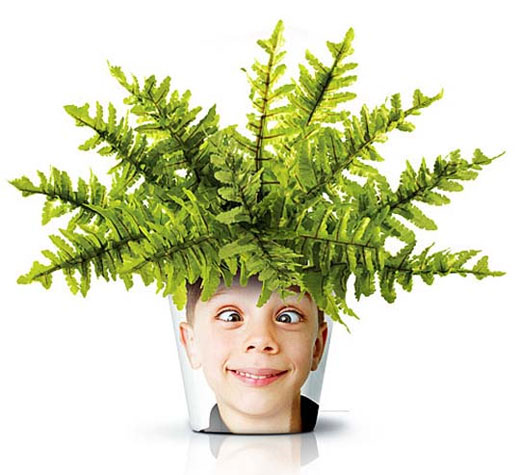 Facepot Fun And Innovative Flower Pot Displaying Familiar