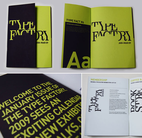 15 creative and unique booklet designs design swan for Typography brochure design