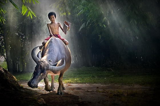 Beautiful And Serene Photography By Jeffry Surianto