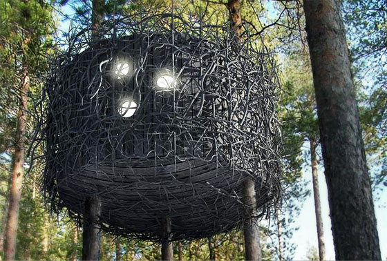 Bird's Nest: Small and Cute Tree Hotel