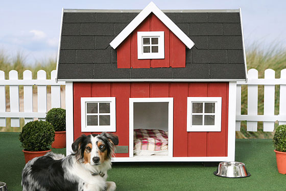 4 Unique and Stunning Dog Mansion Designs