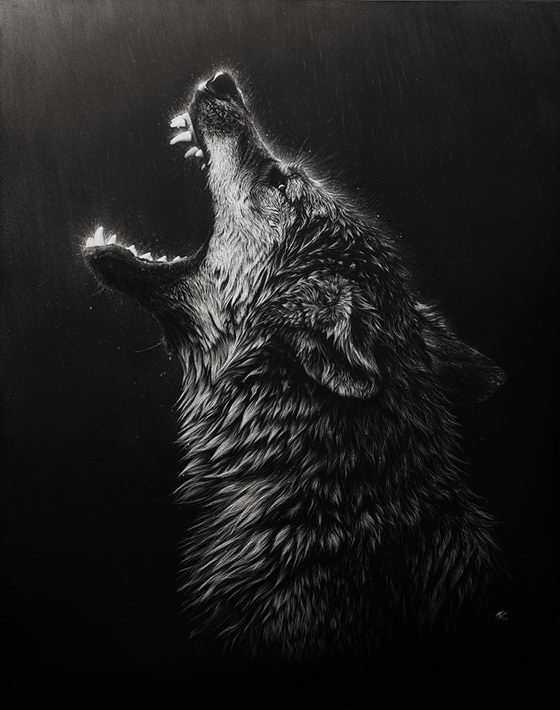 Amazing Photo-Realistic Wildlife Drawing