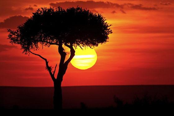 Magnificent Orange Sky Landscape Photography by Süha Derbent