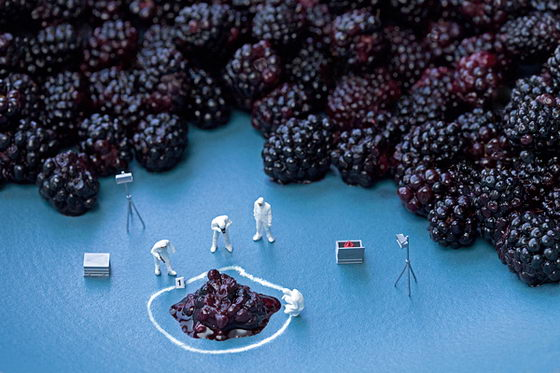 Disparity: Christopher Boffoli's Miniature World