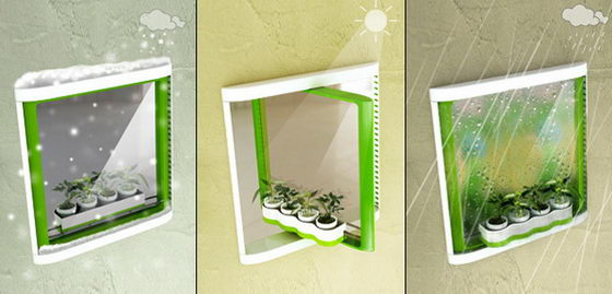 Innovative TwoFace Window for Plants and Cleaning