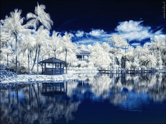 Winter Wonderland: Beautiful Infrared Photography by Maria Netsounski