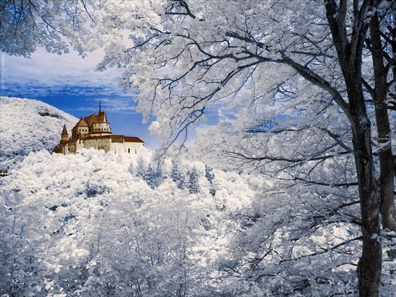 Winter Wonderland Beautiful Infrared Photography By Maria