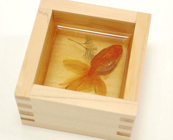 Goldfish Salvation: Stunning 3D Fish Paintings by Riusuke Fukahori
