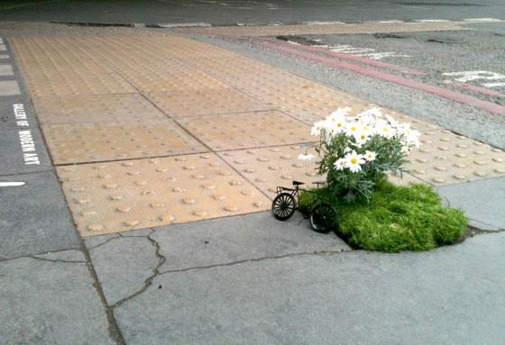 Miniature Pothole Garden on the Road
