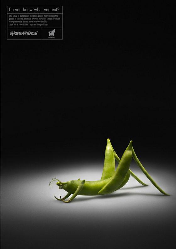 คุณรู้สิ่งที่คุณกิน?  โฆษณาสร้างสรรค์ต่อต้านพืชดัดแปลงพันธุกรรม