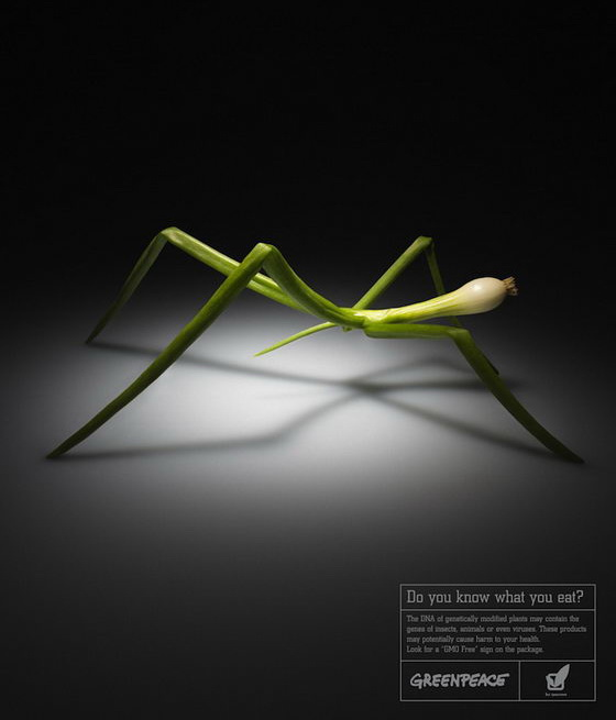 Do You Know What You Eat? Creative Ads Against Genetically Modified Plants