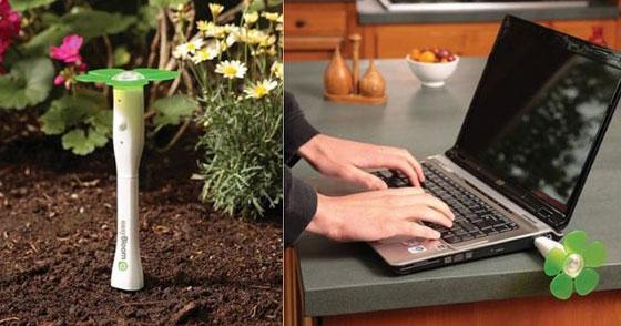 10 Cool Gardening Tools for Garden Lovers