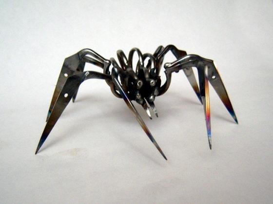 Unusual Scissor Spiders by Christopher Locke