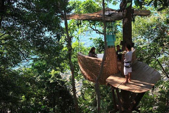 Unusual Tree Pod Restaurant in Thailand