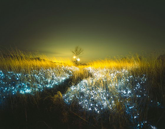 Starry Night: Incredibly Beautiful Light Installations by Lee Eunyeol