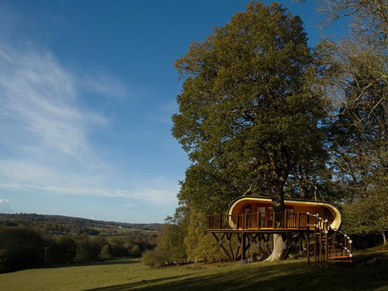 Eco Perch: Beautiful Green Retreat by Blue Forest