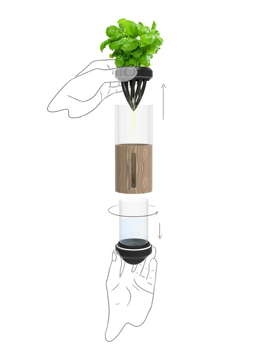 Auxano Hydroponic Vegetable and Herb Grower: Your Indoor Gardening Solution