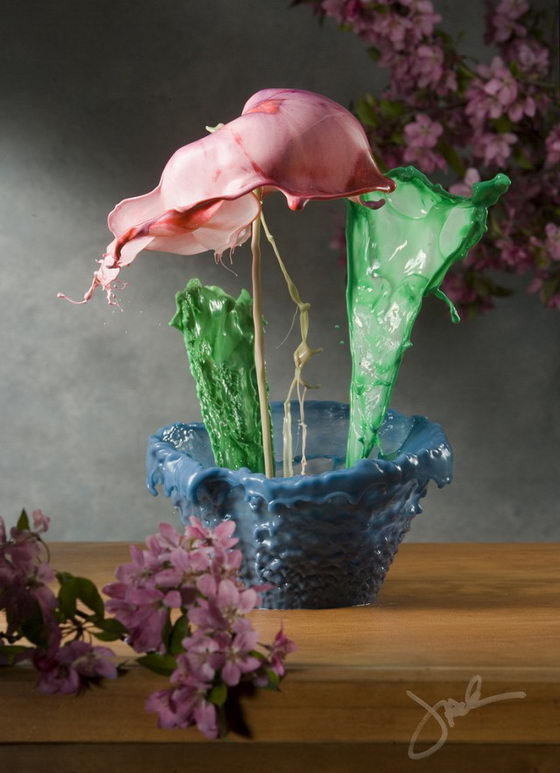Stunning Flowers Created by Splash of Colored Water