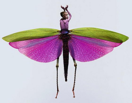 Beauties in Bugs: Insect Women by Laurent Seroussi