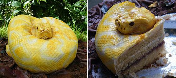 Snake? Cake? A snake CAKE look like an Albino Burmese Python