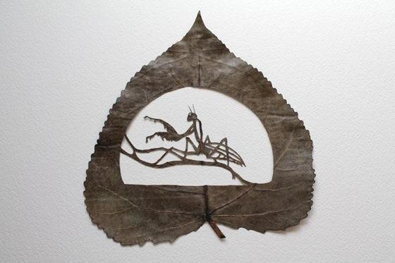 Jaw Dropping Intricate Cutaway Leaf Art by Lorenzo Durán