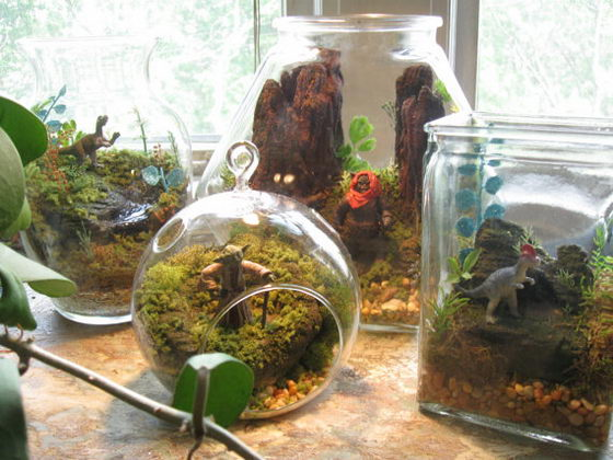 Star Wars Terrariums: a Fun-filled Adventure in Globe
