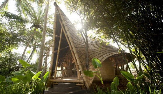 Bamboo House: a Beautiful Green Village in Thailand